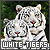 Tigers: White
